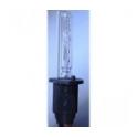 Xenon Bulb H1 Vertex