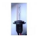 Xenon Bulb H7 Vertex