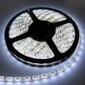 LED juosta LED5050SMD 48 LEDs/m